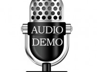 Voice Over Audio Demo